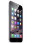 Fotografía Frontal del Apple iPhone 6 Plata. En la pantalla se muestra Pantalla de inicio