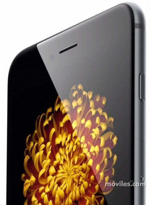 Detalle de la pantalla del iPhone 6