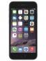 Fotografía Frontal del Apple iPhone 6 Gris Espacial. En la pantalla se muestra Pantalla de inicio