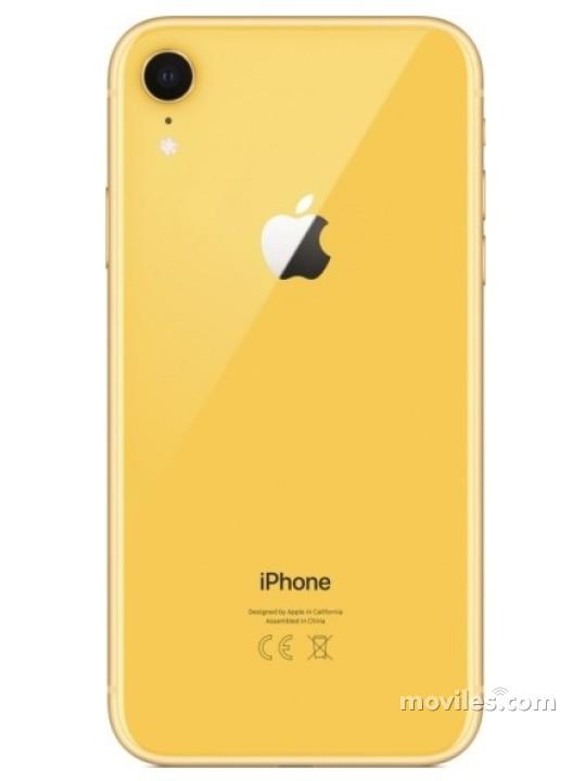 Fotografia iPhone Xr